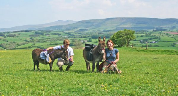 Animal experiences in wales - experiences and gift vouchers