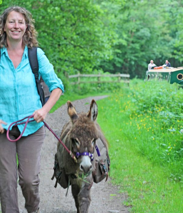 A different way to walk the Brecon & Mons Canal