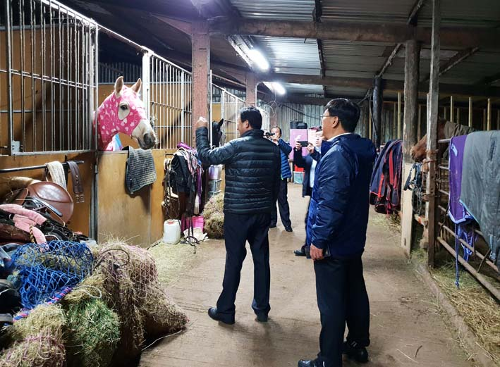 horse livery with chinese visitors