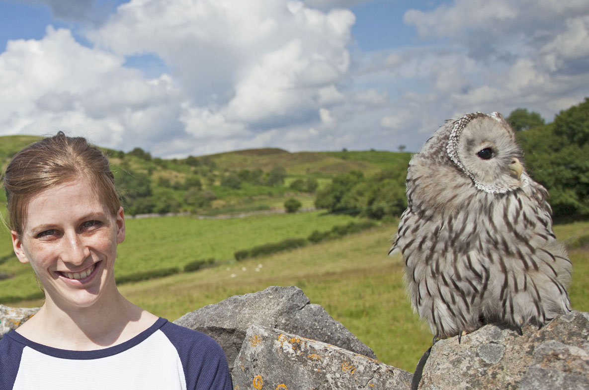 enjoy a day out with an owl with Good Day Out
