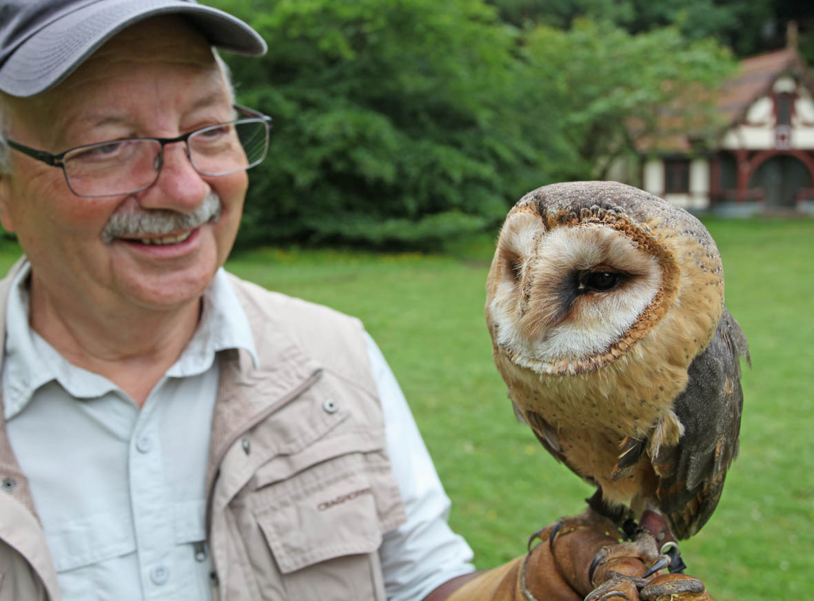 meet an owl on our owl encounter experience day