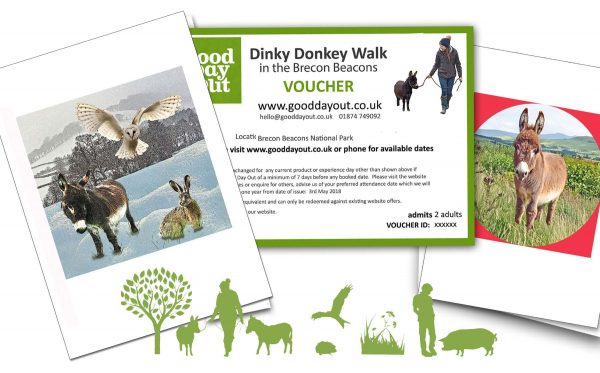 Gift Voucher for Walking Mini Donkeys