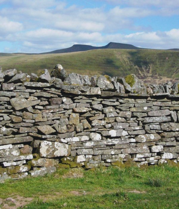 dry stone walling with Good Day Out photo Will Lewis