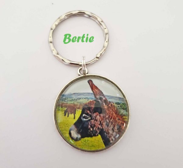mini donkey gift key ring
