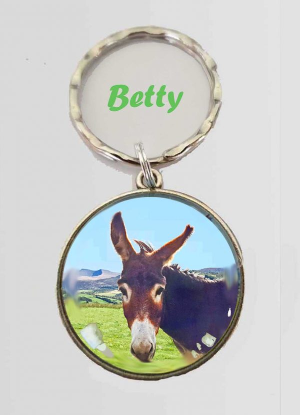 key ring featuring Betty the donkey
