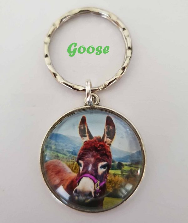 Christmas or birthday present for a donkey lover