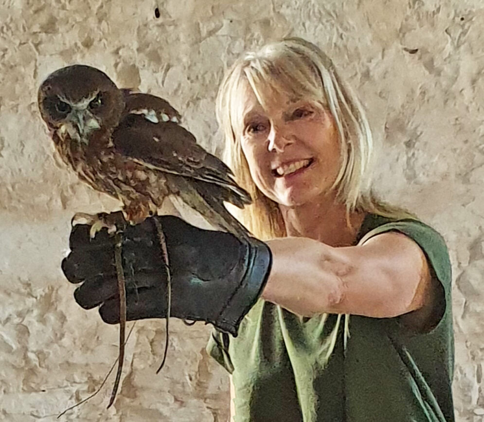 handle and fly owls in our owl experience day
