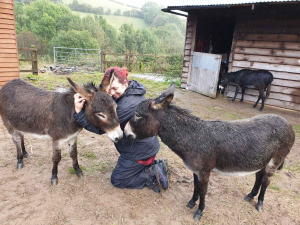 mothers day present with donkeys