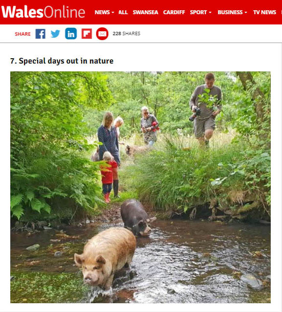 special days out in nature