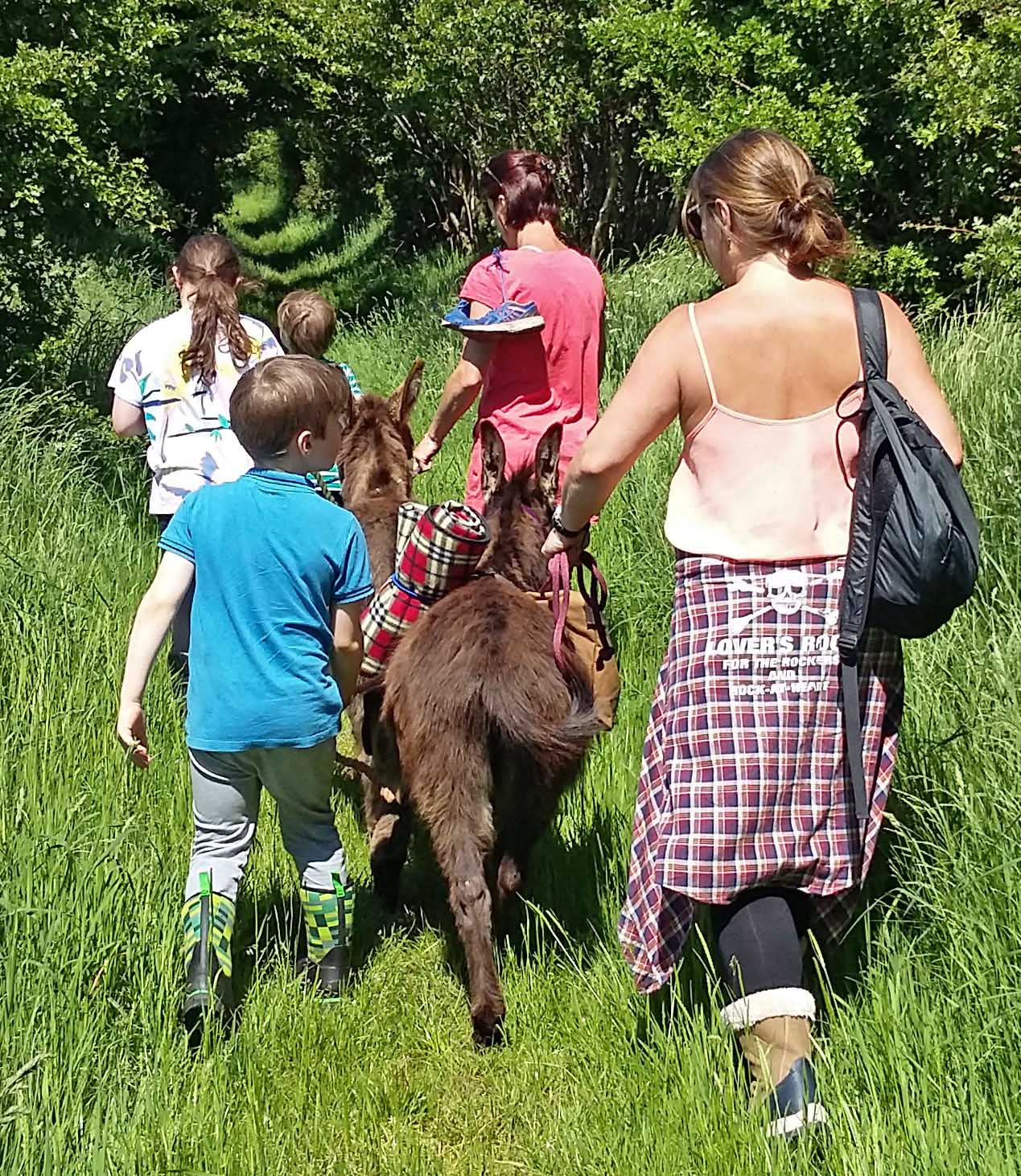 claire irwin on a dinky donkey walk in the Brecon Beacons