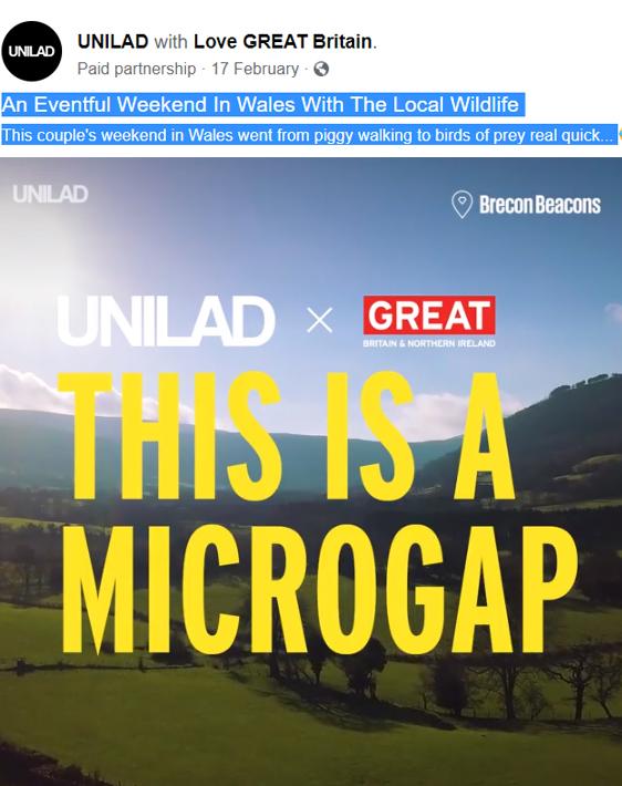 visit britain's Microgap campaign