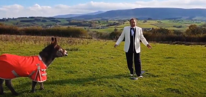 tony royale sings with Maverick the Christmas Donkey
