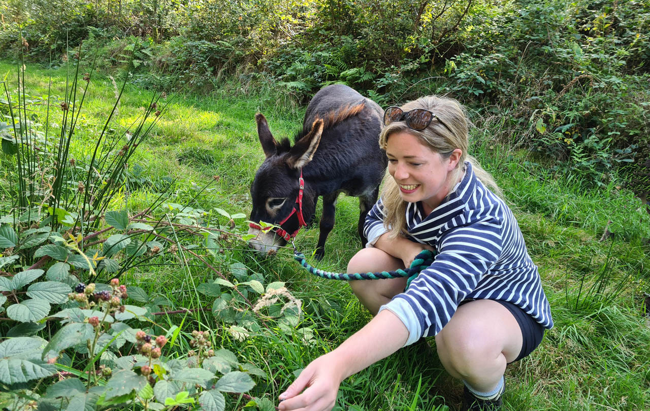 Escape the Everyday foraging with a mini donkey in the Brecon Beacons